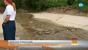 """ДРУГАТА ВАКАНЦИЯ: Фекални води се излизат на плажа """"Кабакум"""""""