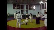 Aikido Seminar Slavia 2008 1.avi