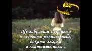 Sting - Fields Of Gold (превод )