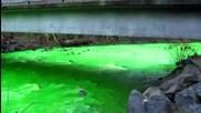 Неонова река ! *hq*