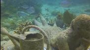 Изкуствено скулптуриран риф - тиха подводна еволюция край Канкун