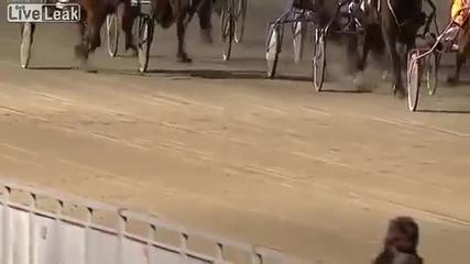 Секс на живо на конни надбягвания в Норвегия! [liveleak]