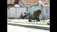 Определиха местата за сватби в Столипиново