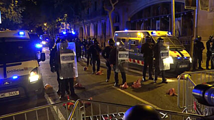 Spain: Pig heads hurled at police during protest over Catalan president's suspension