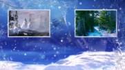 Зимни акценти - разходка в гората! ...