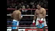 Ray Sefo Vs R.karaev (great Knockout)