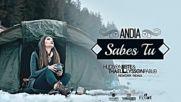 Andia - Sabes Tu / Hudson Leite Thaellysson Pablo Rework Remix /
