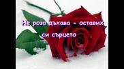 Една Червена Роза