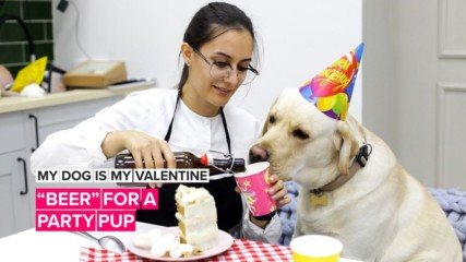 "My Dog is My Valentine: Make doggy ""beer"" for the pup at the pub"