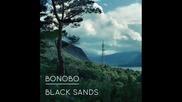 Bonobo - Kong