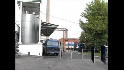 Мандрите решават дали ще произвеждат млечни продукти или имитации