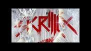 Skrillex - Birdy Nam Nam 'going In' Remix (unreleased 2012)