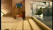Реклама на сок - Птича къща