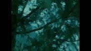 Twilight (hero)