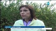 Откриха тялото на изчезналия студент от Пловдив