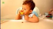 Бебета ядът лимони за първи път компилация 2014