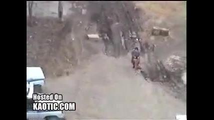 * Побеснял Руски Питбул Застрелян от Полицията *