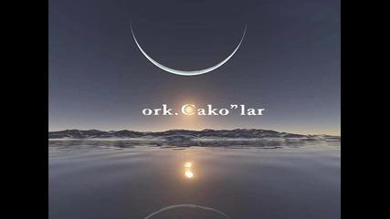 ork cakolar 2011