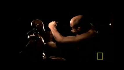 Боговете на смесените бойни изкуства *mma*