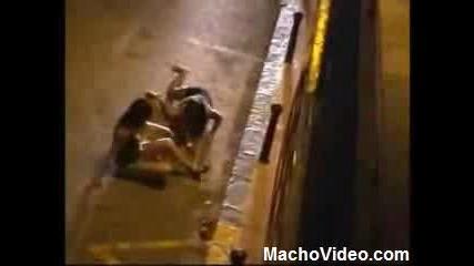 Алкохола Не Е За Малки Момиченца