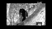 Evanescence - My Immortal (превод)