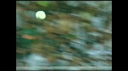 Страхотен гол на Роналдиньо!