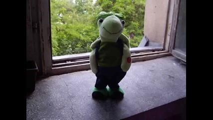 Смешна танцуваща костенурка!!!