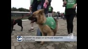 Първият по рода си кучешки маратон се проведе в Богота