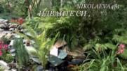 Идвайте си Христо Медникаров, музика: Исихия