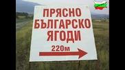 Това може да се види само в Bulgaria (смях) Made in Bulgaria (2)