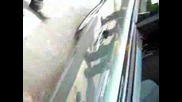Mercedes Bass Автофест звук и визия 17.05.09 *търговище*