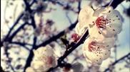 Fabu - Spring (2012 Mastered)