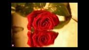 Роси Кирилова Сърцето знае защо