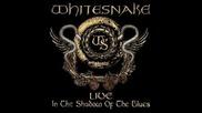 Whitesnake - All I Want Is You