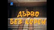 Дърво Без Корен 1974 Бг Аудио Целият Филм Tv Rip Бнт Свят