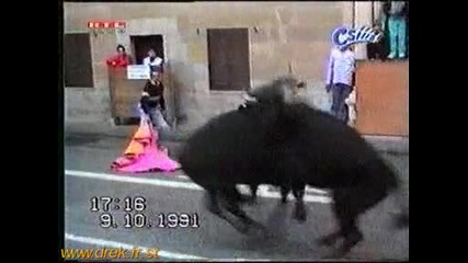 Разбиване между бикове