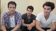 Jonas Brothers - Free Facebook Gifts For You