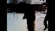 nai lduiq kuker v zidarovo 2010