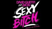 David Guetta - Sexy Bitch Feat. Akon (chuckie & Lil Jon Remix)