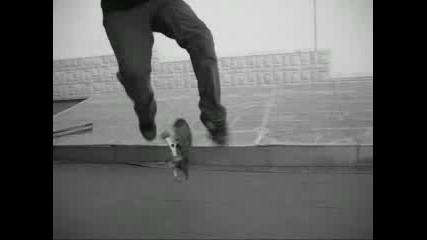 Skate Varial Kickflip