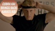 'Cobra Kai' is the Karate Kid sequal you've dreamed of