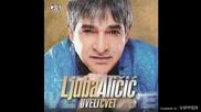 Ljuba Alicic - Zasto mi u snove svracas - (Audio 2011)