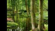 Чудесата на природата ! Красиви пейзажи :}
