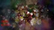 Красивые Песни Шансон - Цветы Лето