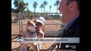 Защо кучетата се прозяват като (и заедно със) стопаните си