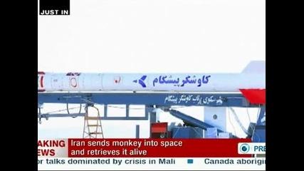 Иран изпрати маймуна в космоса