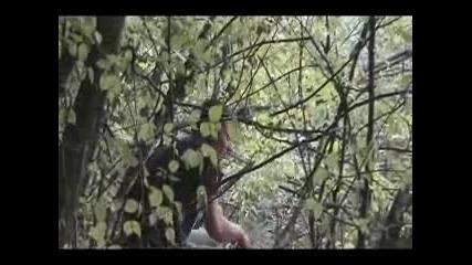 Островът (късометражен филм)