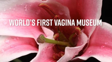 3 fast facts about the new Vagina Museum