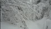 17.1.2016г. - Изкачване п.ел.стълбове в снежно време- към вадата