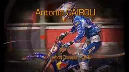 Cairoli Mx1 World Champion 2009
